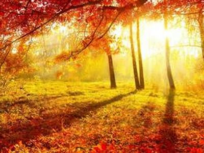熟知秋季养生知识