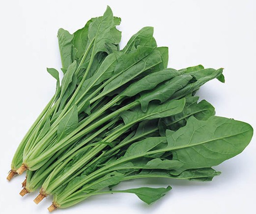 孕妇能吃菠菜吗?孕妇吃菠菜四大好处