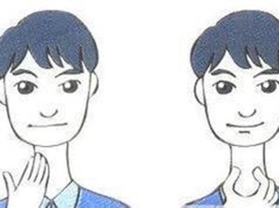 嗓子内部结构图