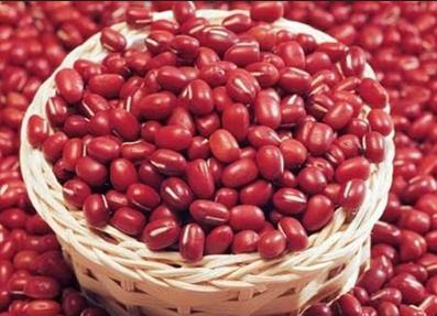 手绘古风少年红豆