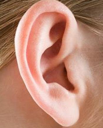 就耳朵的形状来说,有的人耳朵很大,有的人耳朵很小,有的人耳朵较厚
