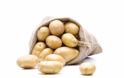 如何种植土豆步骤图解