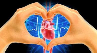 心脏解剖结构手绘图