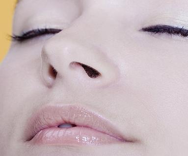 中医对过敏性鼻炎的疗法有哪些_寻医问药中医