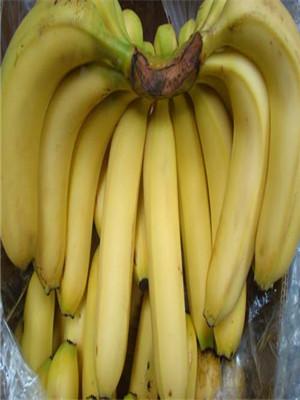 长期熬夜快吃这6种水果补一补