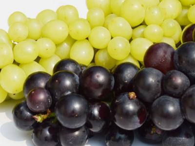 葡萄和提子之间会有什么区别