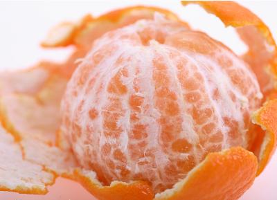 橘子素描画法步骤图解