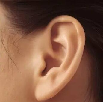 有专家通过研究发现,耳朵大的人长寿是有一定理论依据的.
