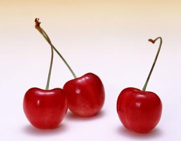 樱桃素描步骤图解图片