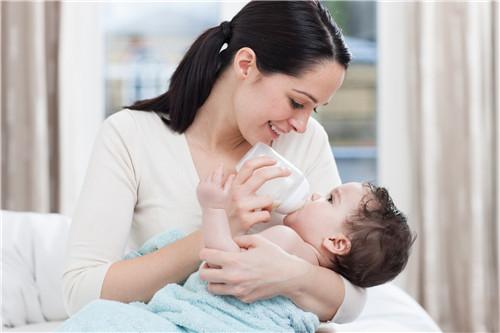 婴幼儿的健脾养胃粥 推荐六款养胃粥