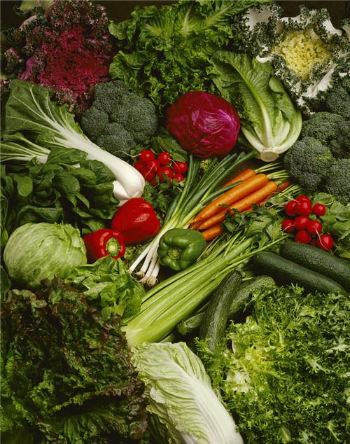 哪些食物有助于减肥