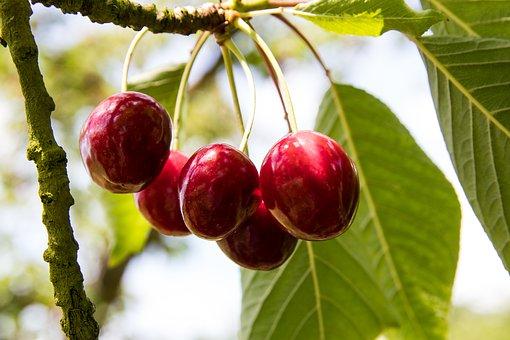 吃什么水果能祛斑 脸上长斑怎么调理