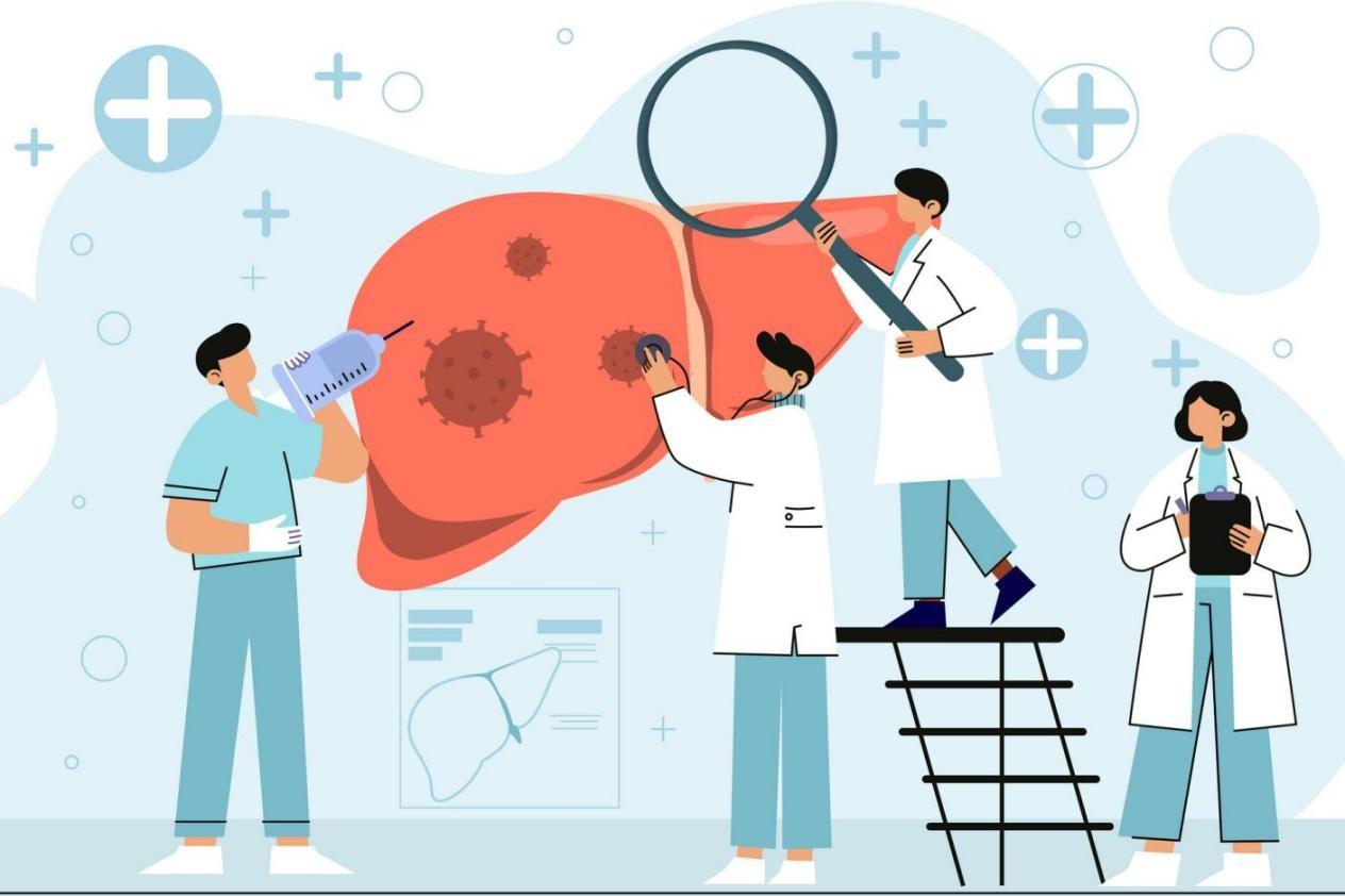 肝脏调理指南:这些食物搭配水飞蓟的功效与作用更有效-今日新鲜事
