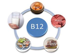 维生素B12缺乏所致贫血