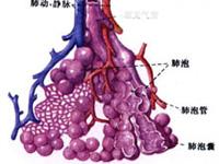 肺泡蛋白质沉积症