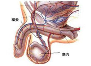 男性生殖腺机能减退症
