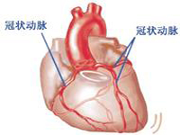 冠状动脉供血不足
