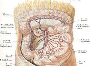 肠系膜上动脉综合征