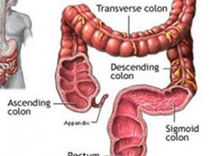 肠气肿综合征