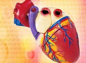 慢性肺源性心脏病