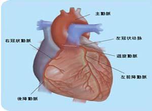 尿毒症性心包炎