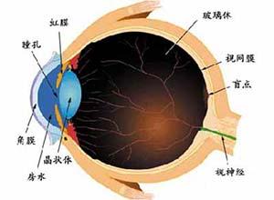 先天性眼球震颤
