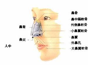 鼻前庭囊肿