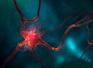 植物神经功能紊乱