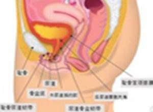 急性尿道炎
