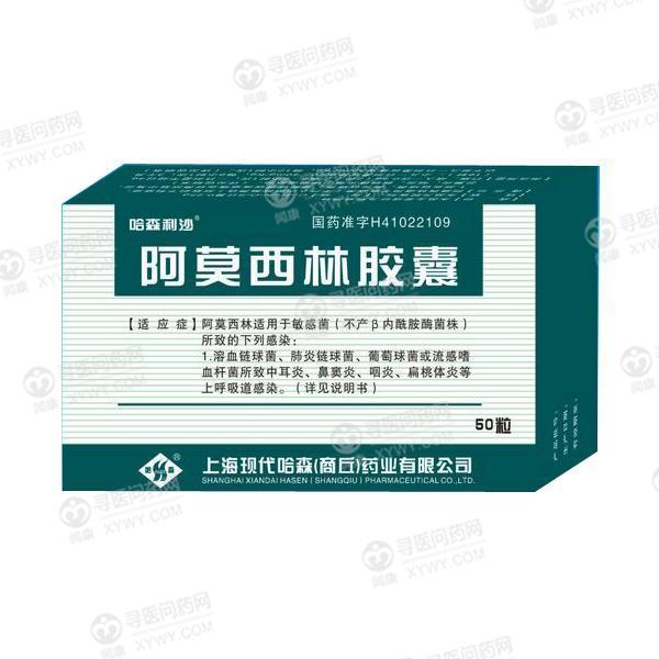 上海现代哈森 阿莫西林胶囊