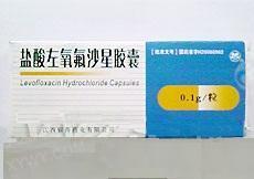 江西银涛 盐酸左氧氟沙星胶囊