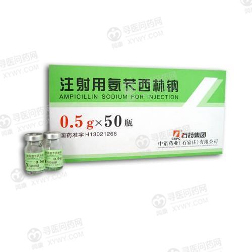 石药 注射用氨苄西林钠