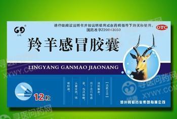 南京厚生 羚羊感冒胶囊
