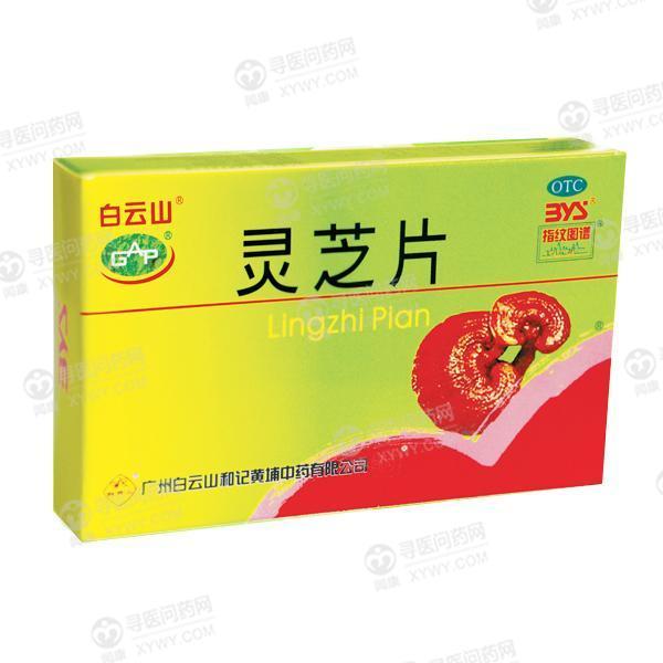广州白云山和记黄埔中药 灵芝片