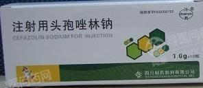 四川制药制剂 注射用头孢唑林钠