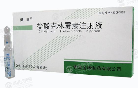 青岛金峰 盐酸克林霉素注射液