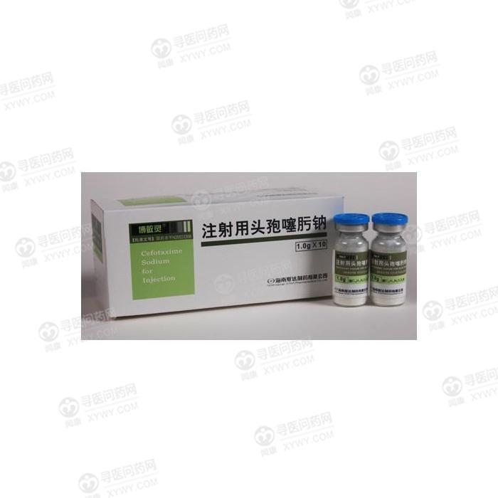 海南斯达 注射用头孢噻肟钠