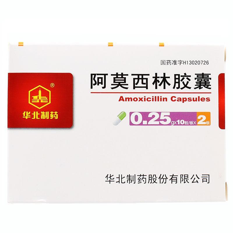 华北制药 阿莫西林胶囊