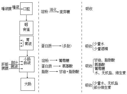 电路 电路图 电子 户型 户型图 平面图 原理图 431_319