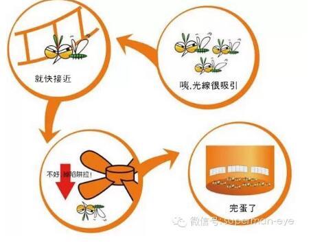 uva管灭蚊灯实物电路图